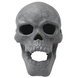 Gift Ideas For Brother Fire Pit Skull