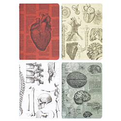 Best Gifts For Aspiring Doctors Notebooks