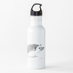 Creative Hedgehog Themed Gifts Water Bottle