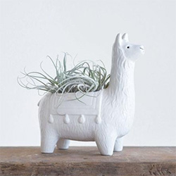 Fun Gifts For Llama Lovers Planter Pot