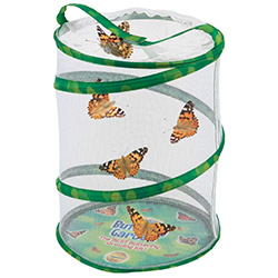 Amazing Butterfly Presents Growing Kit