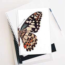 Amazing Butterfly Presents Journal