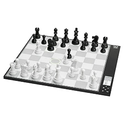 Cool Chess Sets Computer